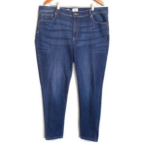 d/C Slightly Curvy Dark Wash Skinny Stretchy Jeans